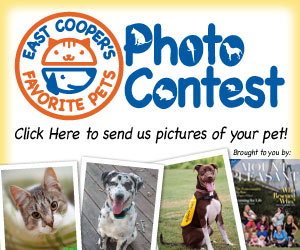 East Cooper: tell us about your pet! Photo contest....